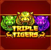 Логотип Triple Tigers