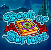 Логотип Book of Fortune